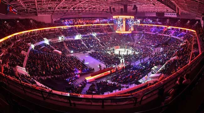 Концерты на стадионе Динамо - фото