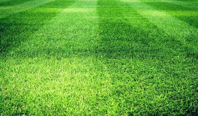 Футбольное поле полосатое - фото на startfootball.info